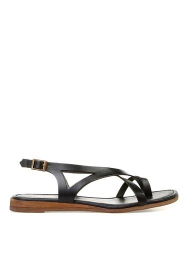 Greyder Greyder Siyah Sandalet 9Y2Cs53357 Siyah